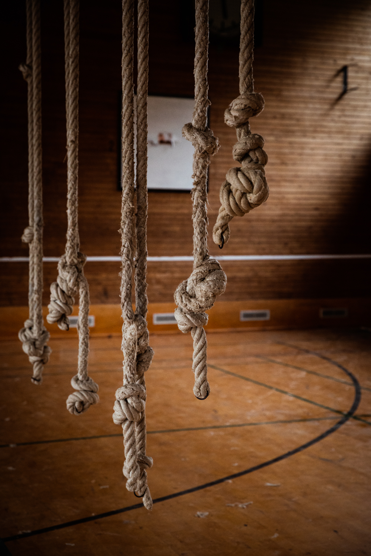 Gymnastiksal, Naturlejren Auderød - Fotograf: Tenna Fonnesbo
